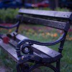 一輪のバラが置かれたベンチ